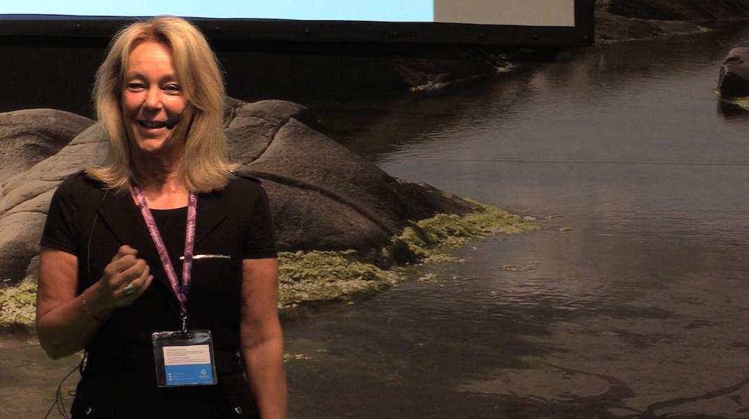 Eva Berlanders föreläsning på Bokmässan